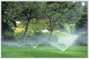 Sprinklers in the park