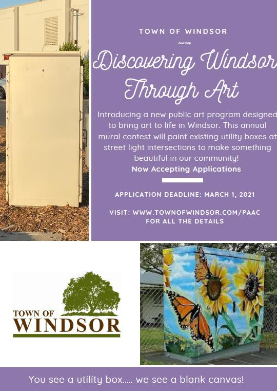Discovering Windsor Flyer.Final